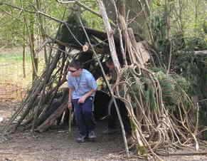 woodlands picutures 2