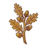 Sprig of Oak