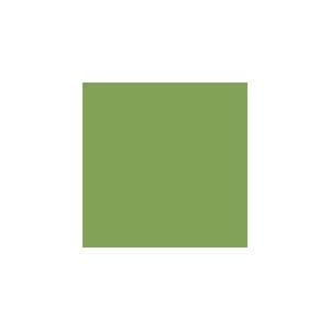 168 EARTH GREEN YELLOWISH