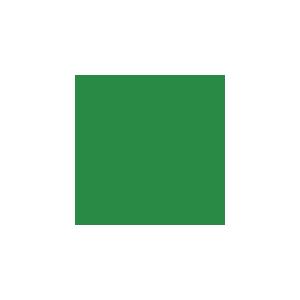 266 PERMANENT GREEN