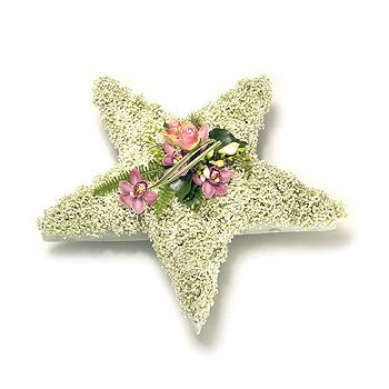 Funeral tribute / wreath - 5 point star - available in a choice of colours