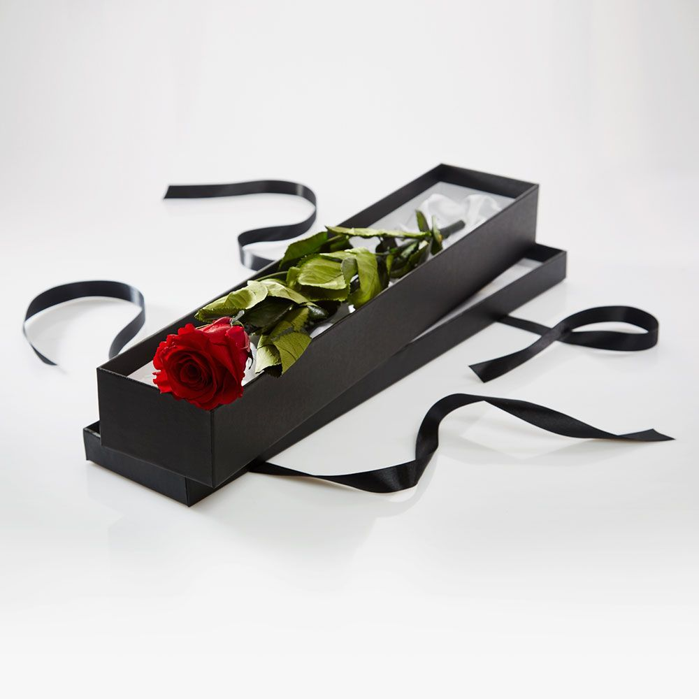 Premium Long Stem single Red Rose - for that special someone