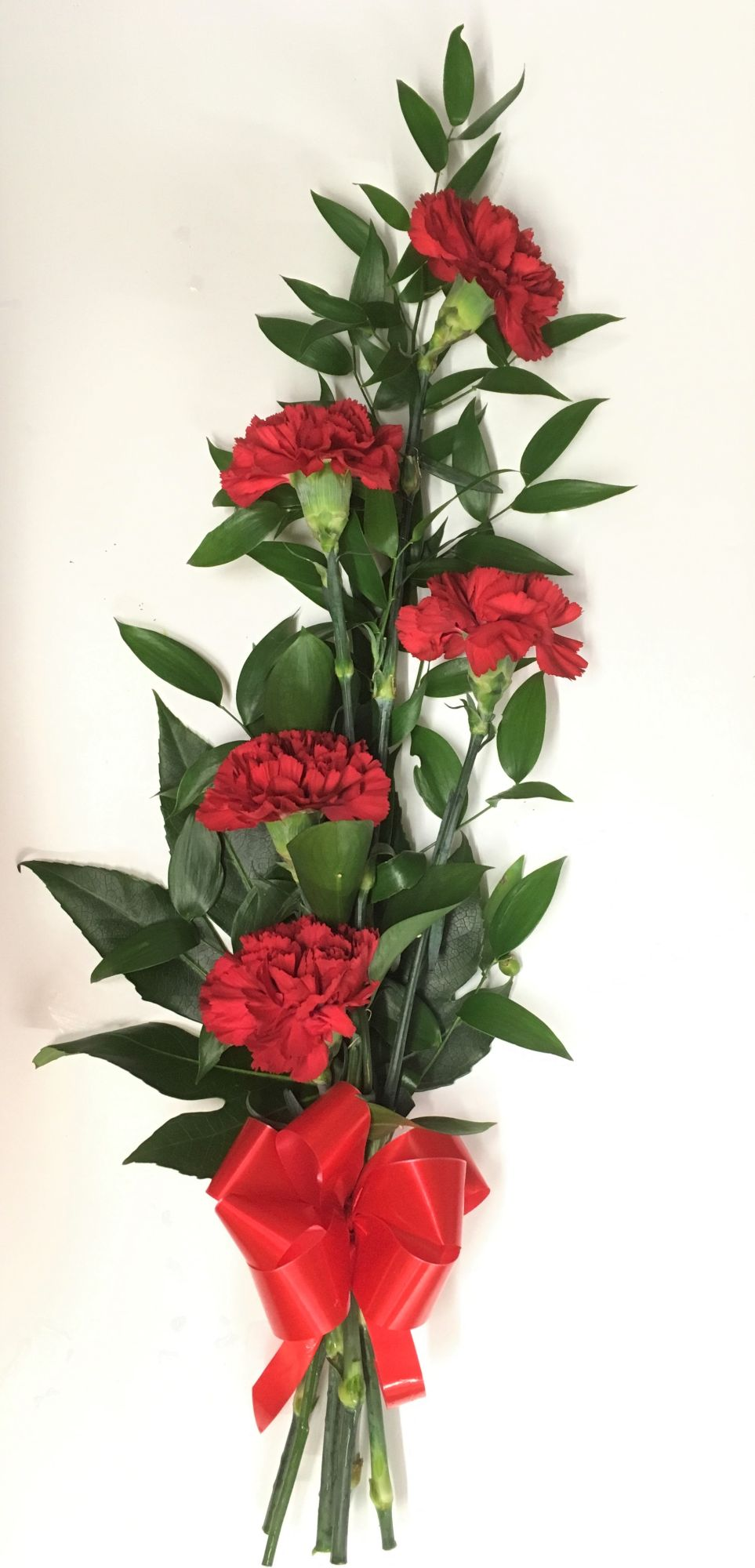 Hand-tied simple line arrangement of 5 carnations or roses - £25.00