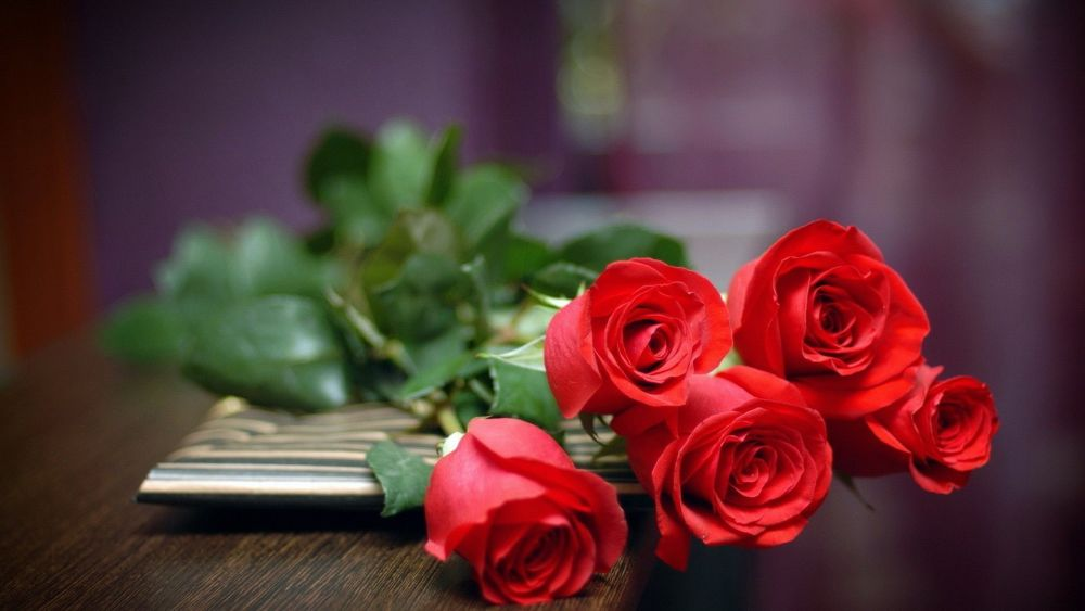 JUST Roses - luxury bunch of Red Roses - order by the stem - local delivery