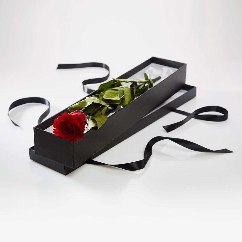 Premium Long Stem single Red Rose in a Luxury silk lined presentation box -
