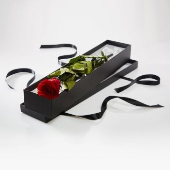 Premium Long Stem single Red Rose in a Luxury silk lined presentation box - for that special someone