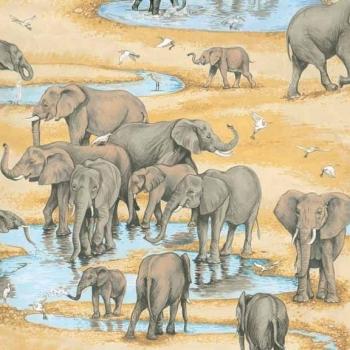 Makower UK - Safari Elephants, per fat quarter ***Was £2.50***