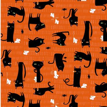 Dashwood Studios - Spooktakular - Cats, per fat quarter   ***WAS £2.85***