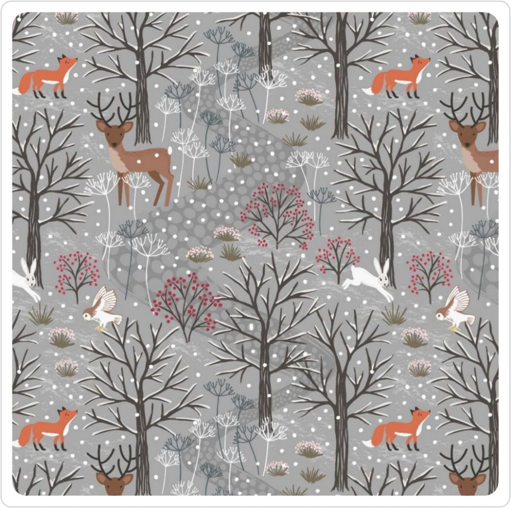 <!-- 455 -->The Winter in Bluebell Wood Collection