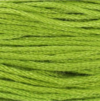 Anchor Stranded Cotton/Embroidery Floss - 0255
