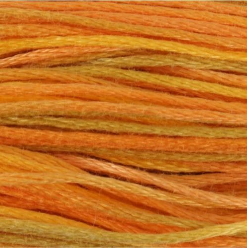 <!--  296 -->Anchor Stranded Cotton/Embroidery Floss - 01305