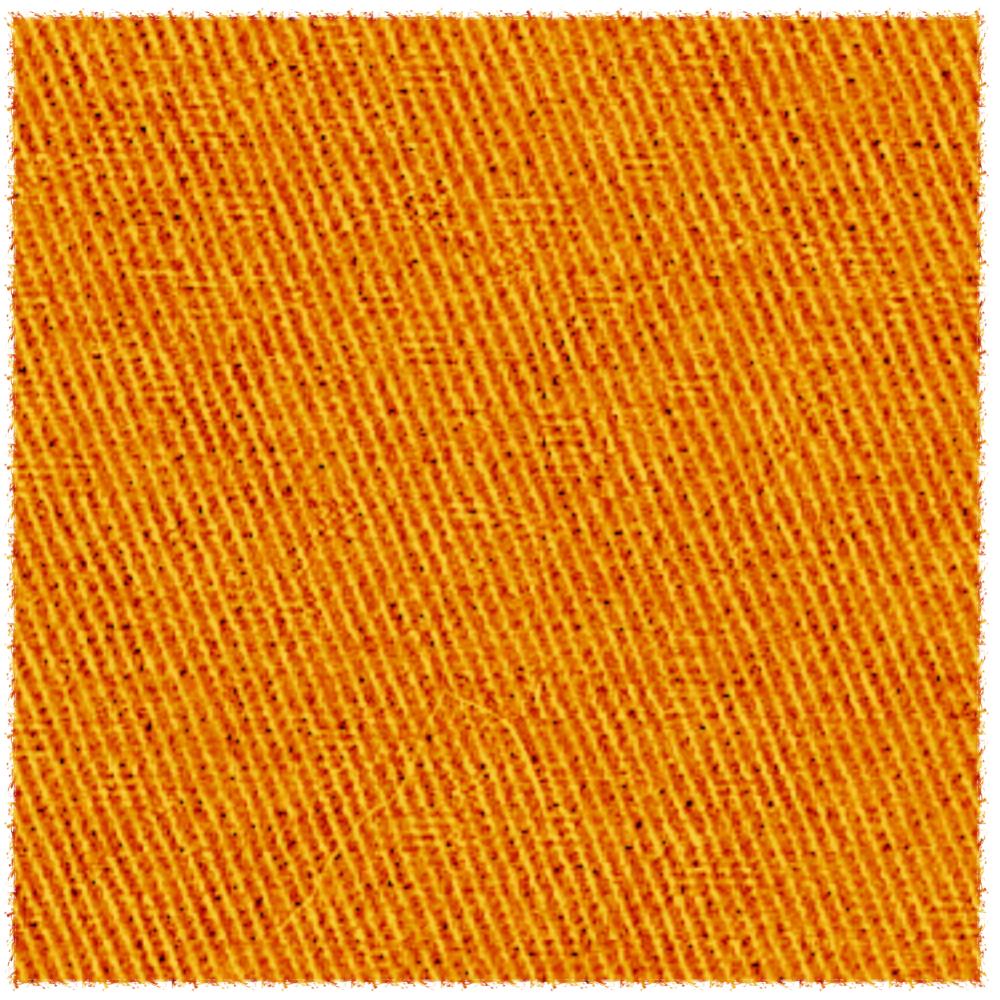 <!-- 008a -->Oranges