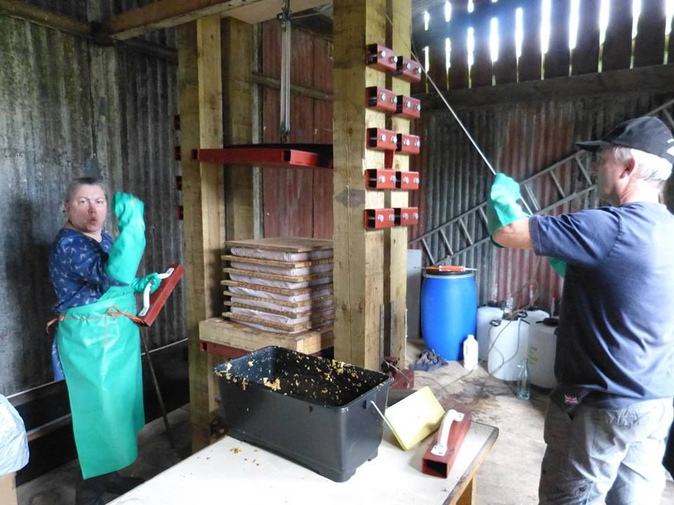 Pressing with home made cider press.