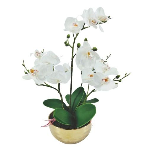 Real Touch Orchid In Gold Pot