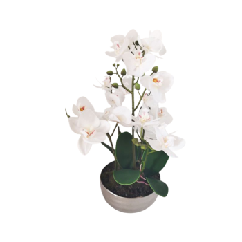 Real Touch Orchid In Silver Pot
