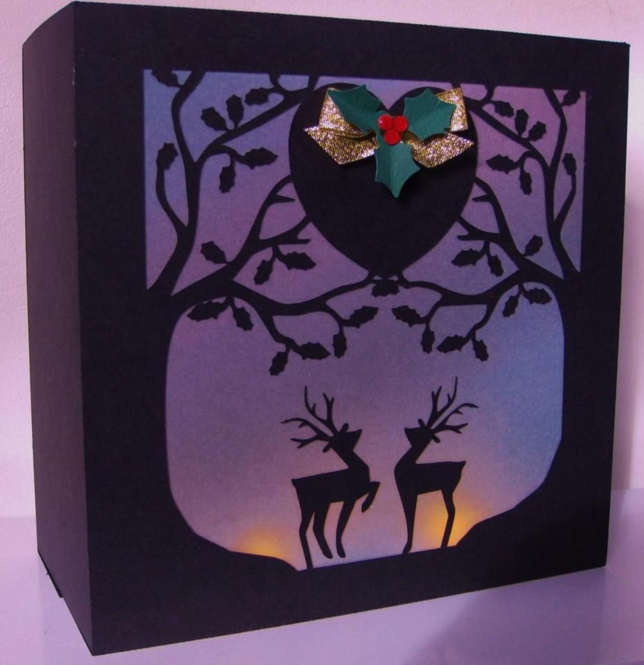Holly Trees Gift Box / Luminaire