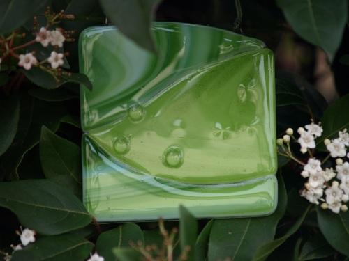 small dew drop leaf