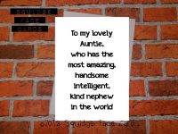 To my lovely Auntie, who has the most amazing, handsome, intelligent, kind nephew in the world.