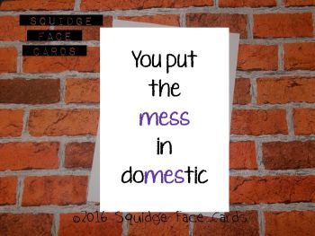 You put the mess in domestic