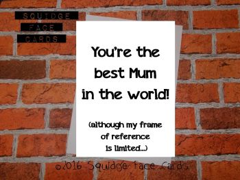You're the best Mum in the world! (Although my frame of reference is limited)
