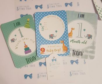 Baby boy Milestone cards - Months old today