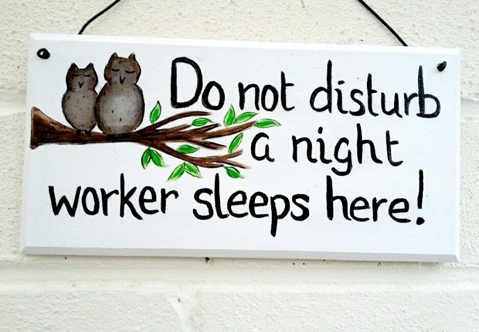 Unique Owl themed 'Do not disturb' sign