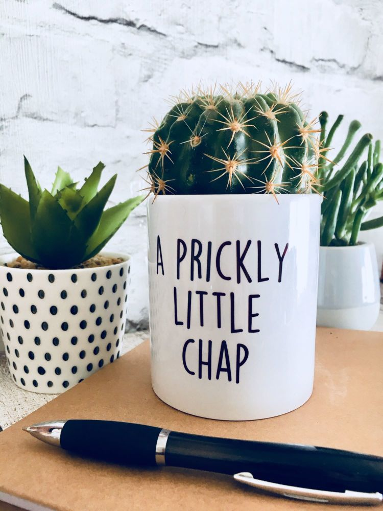 A prickly little chap Plant Pot