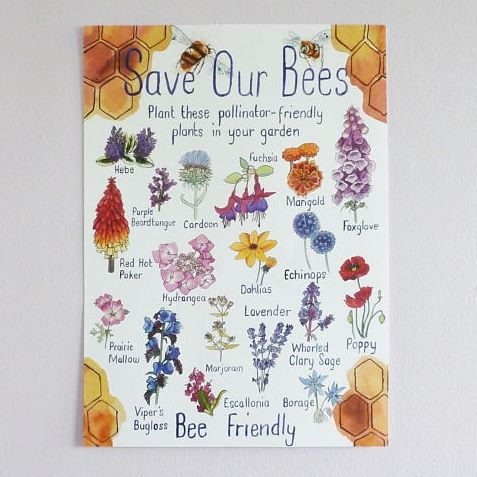 Save the Bees by Planting These Print