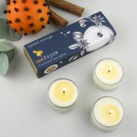 Tea Lights - Spiced Orange