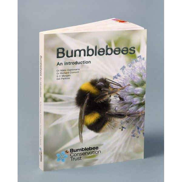 Bumblebees - an introduction