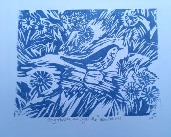 Song thrush amongst the dandelions