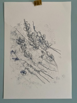 Mussel shell monoprint (3)