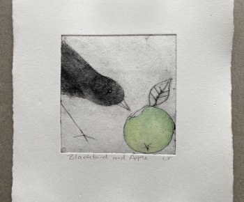 Blackbird and apple (1)