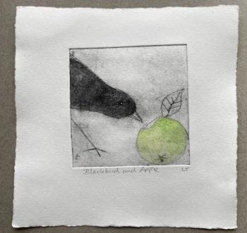 Blackbird and apple (2)