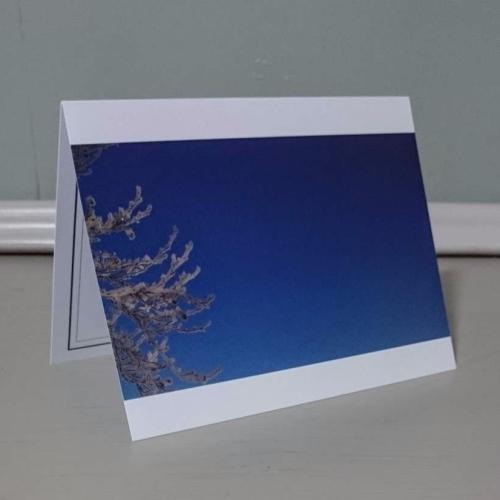 'sharp frosty blue'