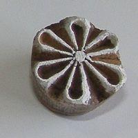 (F 40)Flower (MG)