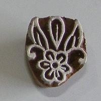 (F 21)Flower