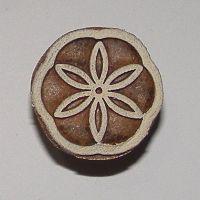 (F 25)Flower