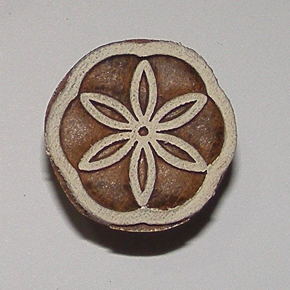 <!--025-->(F 25)Flower