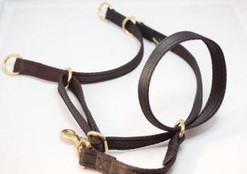 Figure of Eight Headcollar - Small