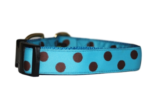 Turquoise & Brown Polka Dots