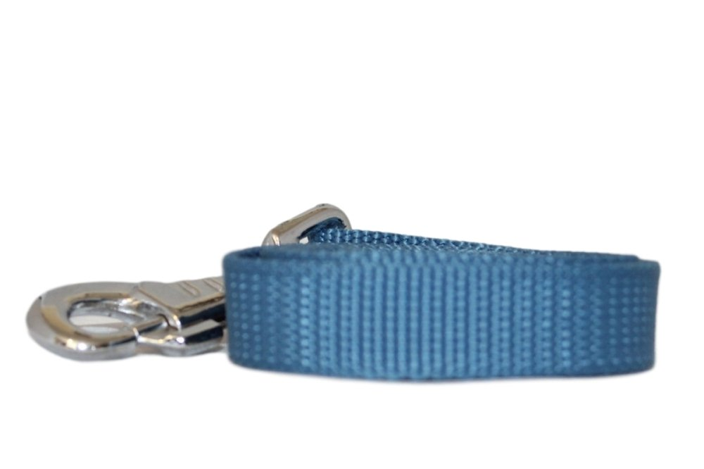 Heavy Plain Weave Webbing Lead - 20mm