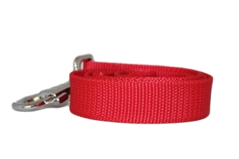 Heavy Plain Weave Webbing Lead - 25mm