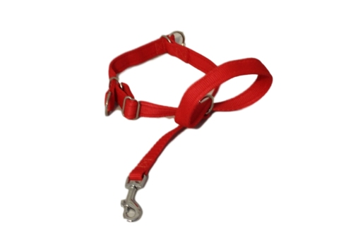 Figure of Eight Headcollar - Medium
