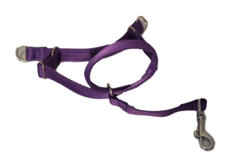 Figure of Eight Headcollar - Large