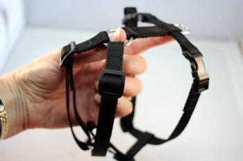 Standard Harness