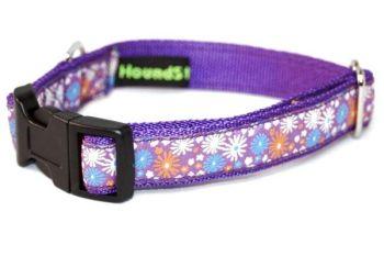 Purple Floral Fireworks
