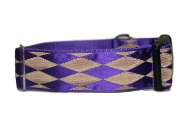 Purple Harlequin