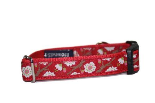 Red Sakura