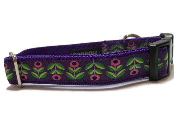 Purple Bellis